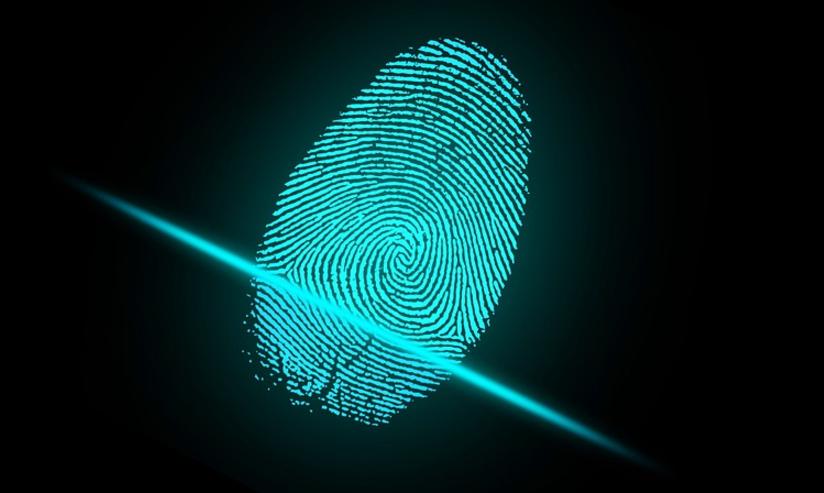 vivoX20Plus屏幕指纹版评测 革命性屏幕指纹技术