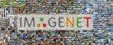 索尼发布新的方法,在ImageNet数据集上22...