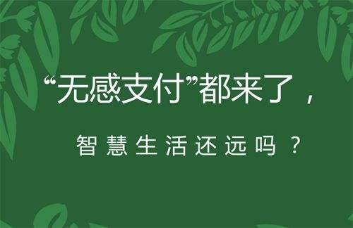 迎合中国用户需求,重橙网络推出中国版Adobe Flash Player