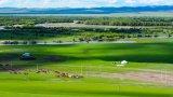 物联网技术在农业领域的应用