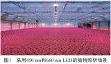远红光LED对植物生长有什么影响