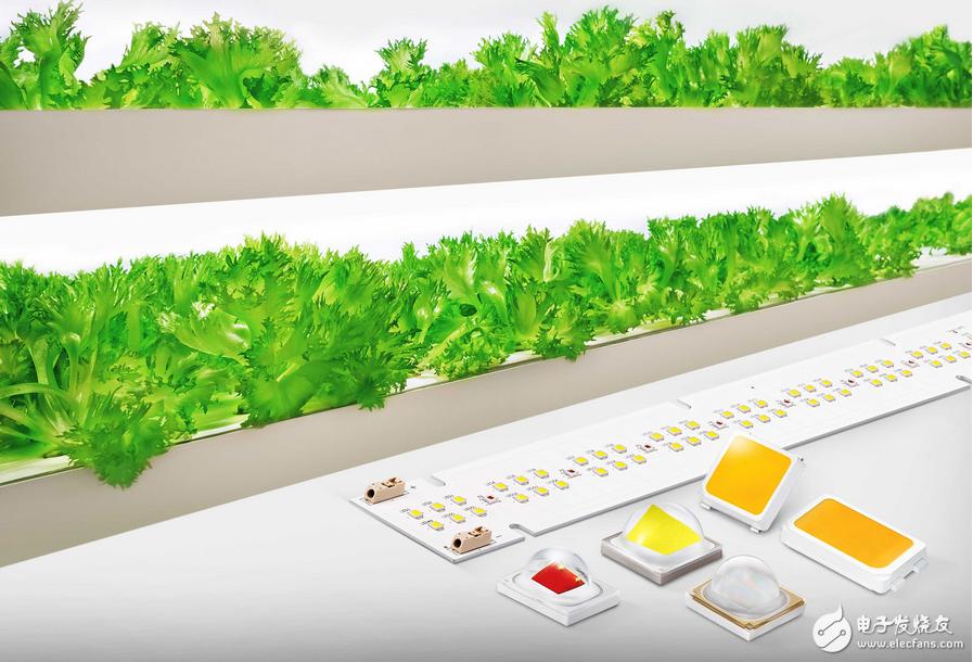 三星电子推出全新植物照明LED产品系列 全面改善农业环境以及降低照明系统成本