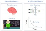 使用AI方面的知识来改进人类智能