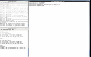 PCI Express IP设计的过程与仿真介绍