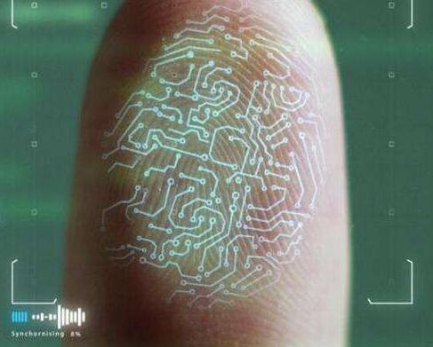 生物识别long88.vip龙8国际在全球消费类市场上普及 电容式指纹识...