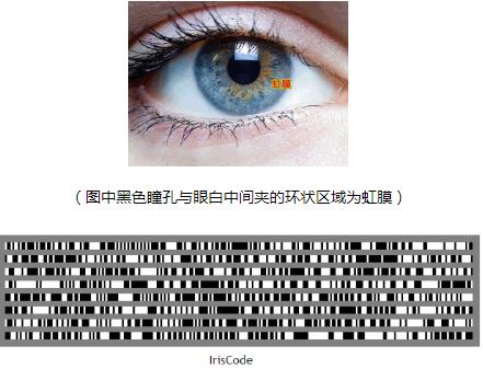 虹膜识别绝不是空口噱头 已然深入到各大行业
