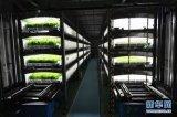 全球首个地下全自动植物工厂