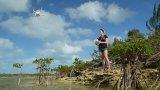 科學家使用日常無人機檢測和監測淺水區的海洋巨型動物