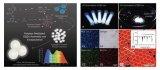 一种密胺树脂/石墨烯量子点复合微球新型白光发光材料
