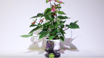 MIT开发出植物机器人 由植物大脑驱动