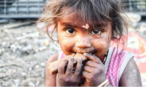 物联网可以通过改善供应链来抑制全球饥饿的问题