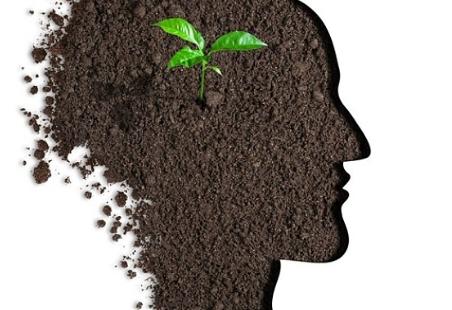 AI+农业具有发展前景 成长空间广阔