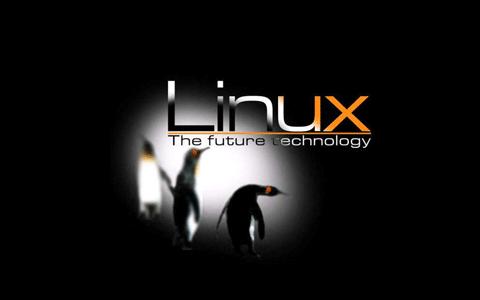 Linux技术应用课程设计的详细实例资料说明