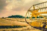 如何从人工智能到物联网改变农业与食品工业