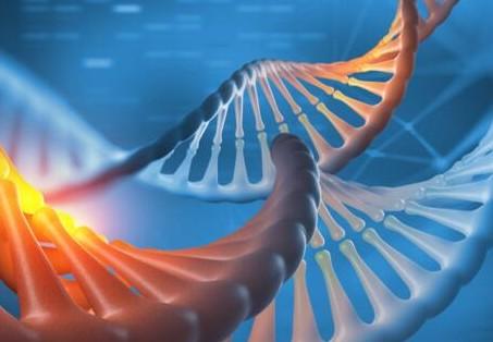 区块链可能会成为保持消费者DNA信息隐私和访问性的新方法