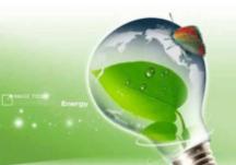 科学家利用活植物发电点亮LED灯泡