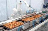 工业机器人常用的七种编程语言