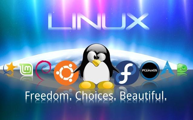 Linux操作系统的四道测试题和答案概述