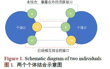 接口智能模型的算法表示和使用例子