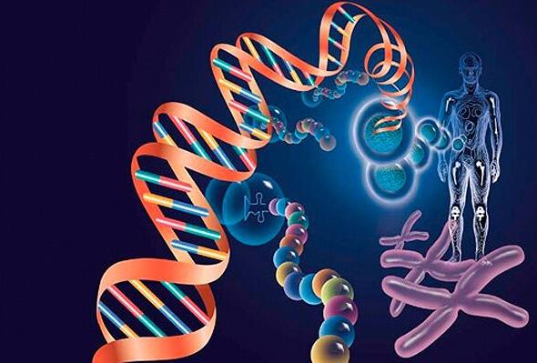 应用最广泛的4种生物识别技术大盘点