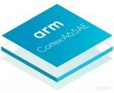 Arm宣布推出首款集成功能安全的多线程处理器