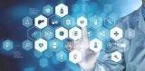 盘点传统产业数字化转型之路