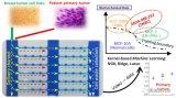 微流体压缩通道阵列结合机器学习识别乳腺癌细胞
