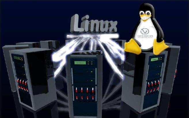 如何进行Linux系统下的分区详细方法规格说明