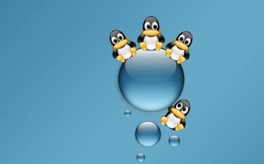 Linux操作系统之奥秘PDF中文版教材免费下载