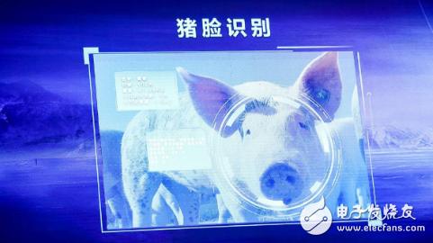 中国很多科技公司都通过AI技术 打造绝对让人放心的食材