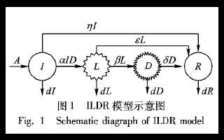 如何设计一个网络垃圾信息ILDR传播模型