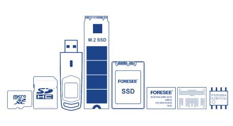 江波龙电子产品见面会召开 与客户共同预见存储行业发展的新境界