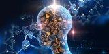 UCLA研究人员用三个实验表明,AI网络实在太好骗了