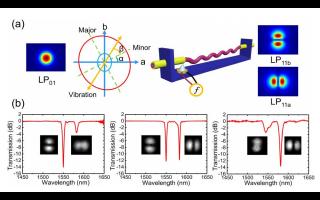 声光模式转换器动态模式可切换旋涡光束的详细资料概述