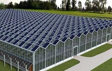 2018年山东省太阳能产业发展实现新跃升,国内市场占有率达40%
