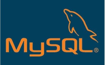 如何吧Mysql数据库移植到嵌入式Linux的详细资料说明