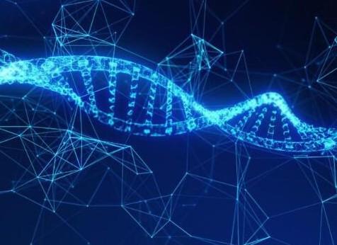 区块链技术将对全球的制药业产生影响