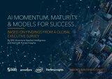 人工智能势头、成熟度和成功模型报告