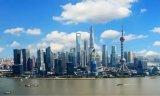 上海加快落实集成电路、人工智能等产业政策