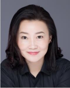 唐曉蕾,賽靈思公司大中華區銷售副總裁