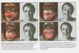 探析AI读取人脸表情的正确打开方式