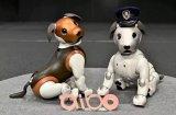 索尼公司推出了2019限量版Aibo,同时也带来...