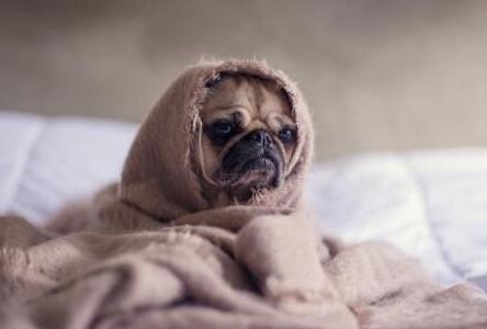 冬天空调制冷效果不好 主要有以下原因