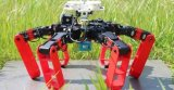 通过模仿沙漠蚂蚁的能力,设计出一种可以独立移动的机器人