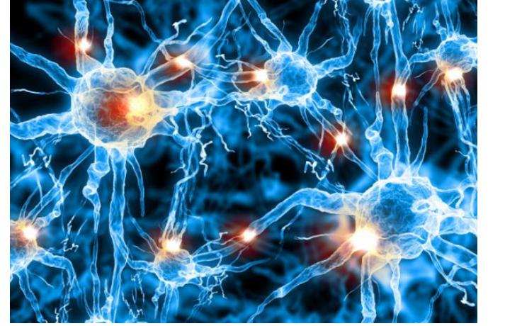 神经形态生物系统的PDF版电子书免费下载