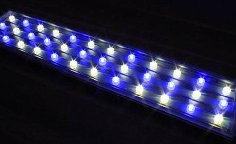 第十五届深圳国际LED展有哪些亮点