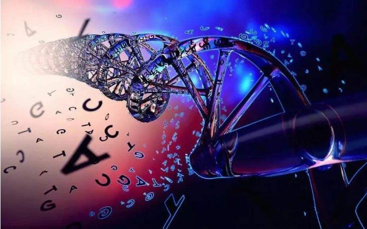 遗传算法及其应用书籍的详细资料说明