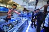 协同发展5年,天津工博会见证和推动企业的融入和变迁
