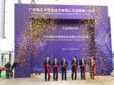 国内首个虚拟IDM晶圆厂落户广州