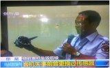 """波音737MAX8飞机两次失速坠毁,攻角传感器成为了波音的""""暗黑武器""""?"""